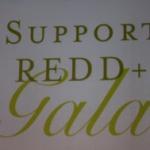 REDD+ Alert
